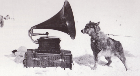 A Gramophone and a Dog