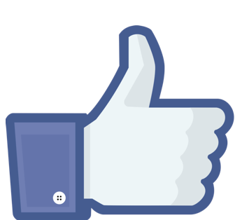 "The Facebook ""Like"" icon"
