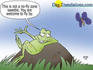 Today's Cartoon - Yes Fly Zone