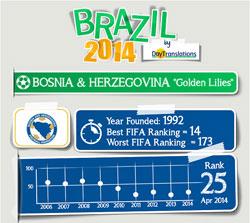Brazil 2014 Bosnia-Herzegovina
