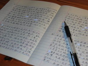 Chinese Language Homework