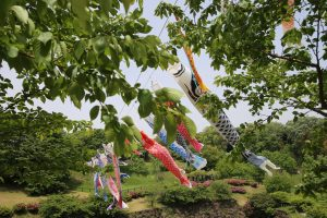 carp streamer celebration Ōgata Renkyū