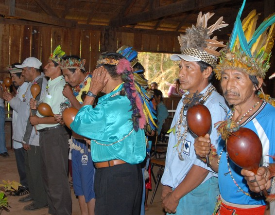 Guaranis Men Wearing Traditional Head Gear For A Ritual