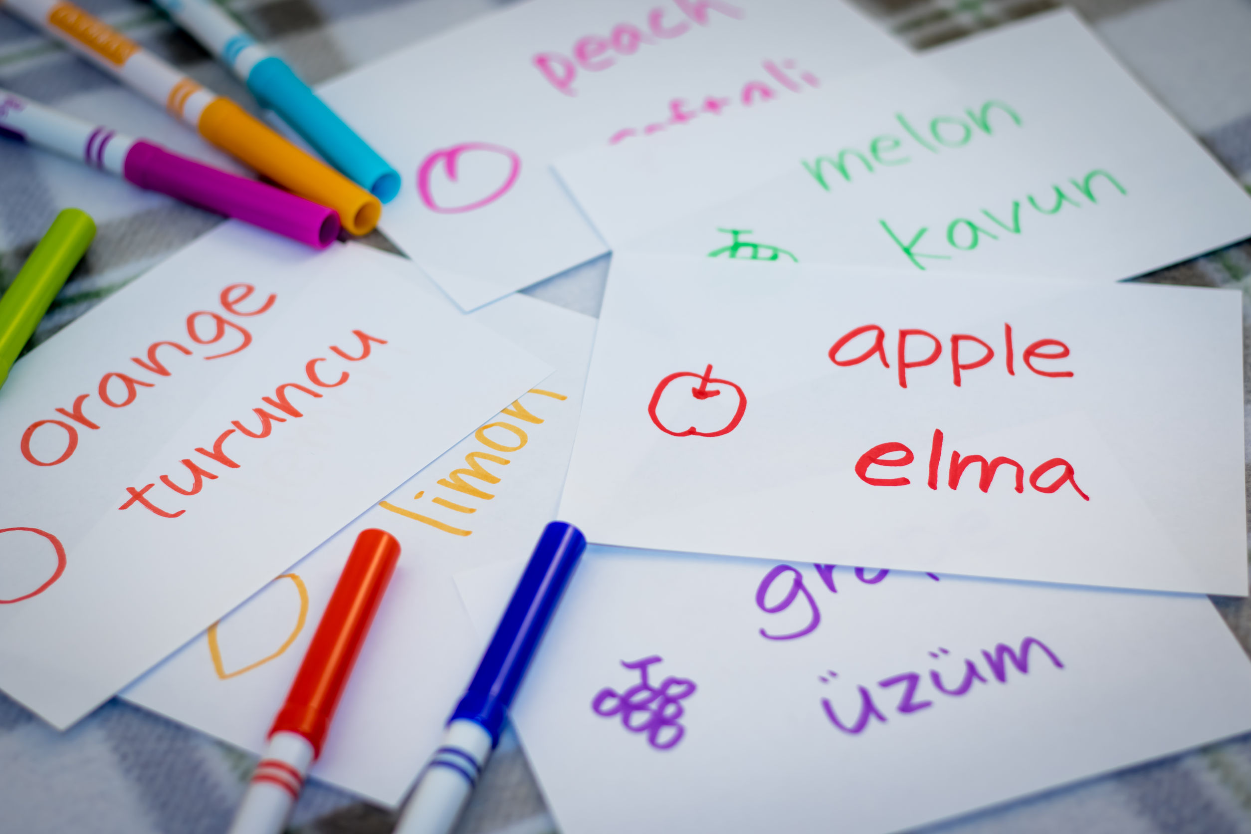 Learning Turkish Language with Fruits Name Flash Cards
