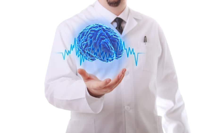 rhythm cycle of the human brain
