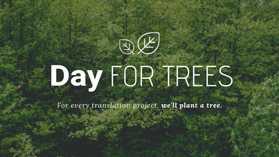 day-for-trees-banner-campaign-forest