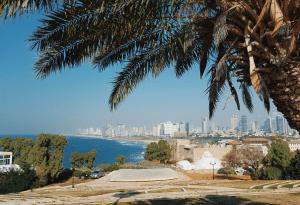 tel-aviv-beach-daylight