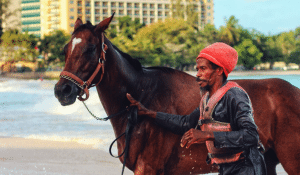 barbados-man-with-horse-in-front-of-beach