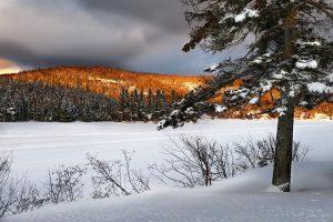 Canadian-snow-landscape