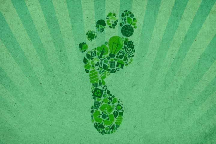 9 Famous Companies That Are Reducing Their Carbon Footprint