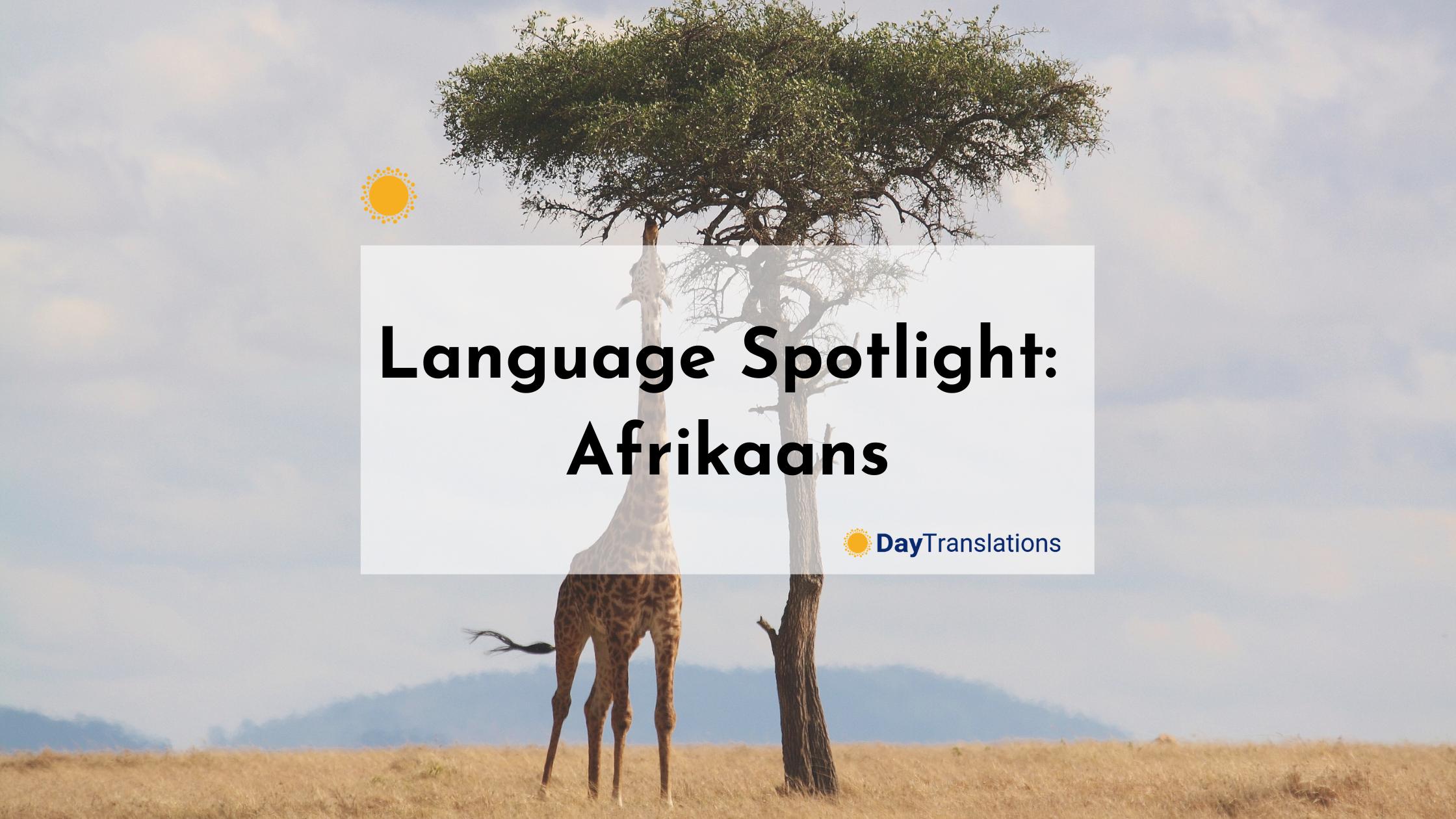 Language Spotlight: Afrikaans