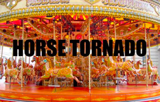 DayTranslations-HorseTornado