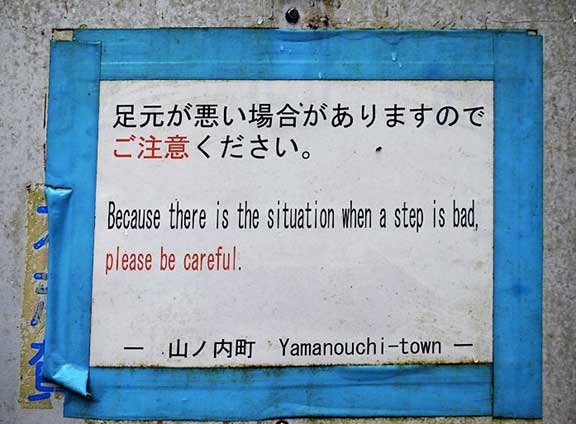 Mistranslations - Please be careful